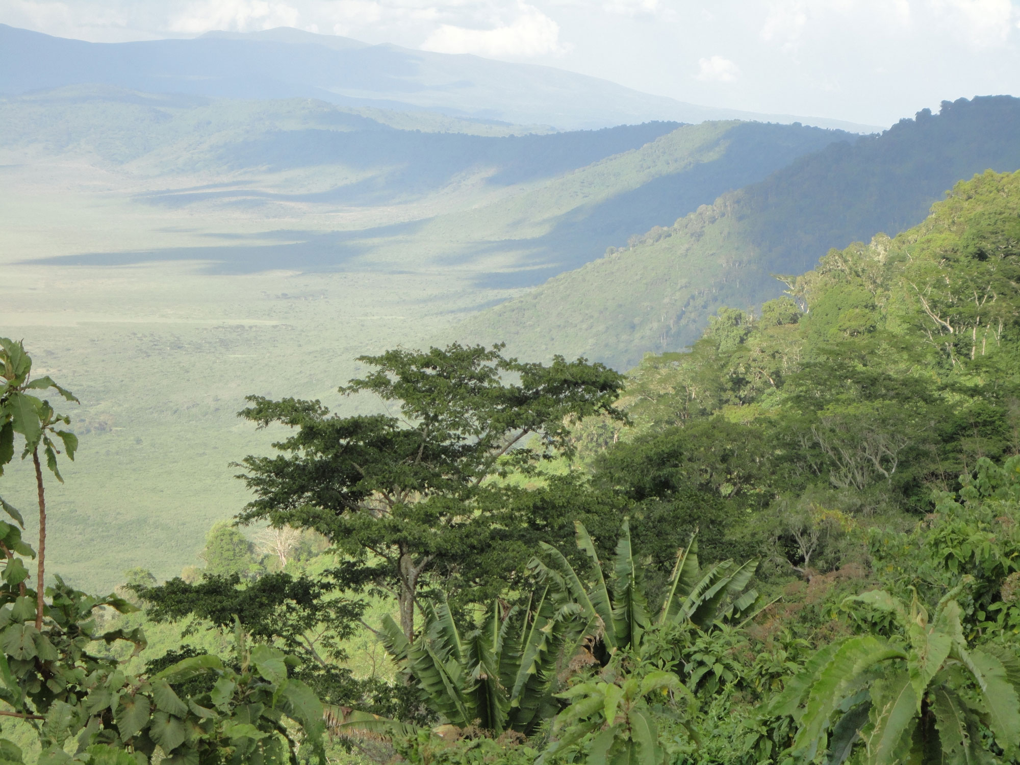 Travel Medicine - The Ngorongoro Crater